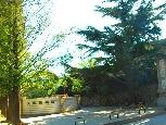 大連植物園